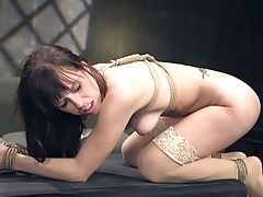 Tied Up Whorable Bitch Alana Cruise Is Worth Restrain Bondage And Hard Rear End