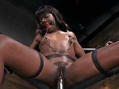 Black Ultra-cutie Gets Ball-gagged And Tied Up Before Being Fiercely Masturbated